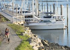 shippan landing trail